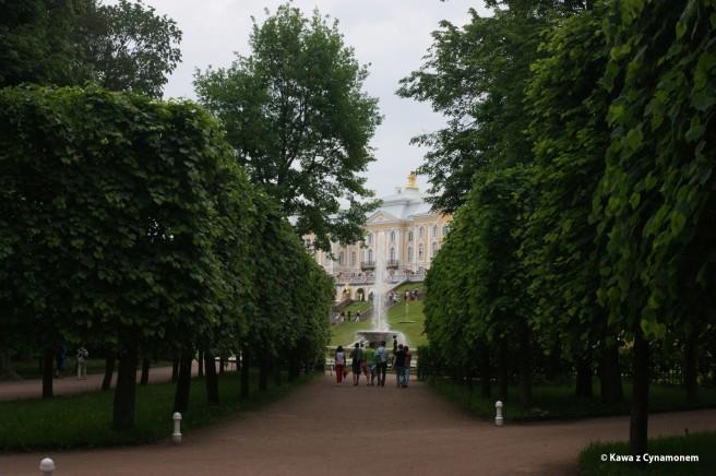 Petersburg - Peterhof